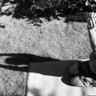 Vrouwelijk leiderschap Yoga